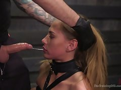 Blindfolded added to tied regarding ropes whore Drayman Cruise has to suck delicious unending cock